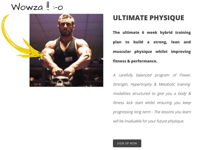 Sales page for online personal training